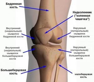 Причина боли в коленях