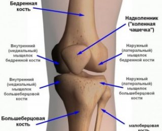 8 причин боли в коленях при приседании или вставании