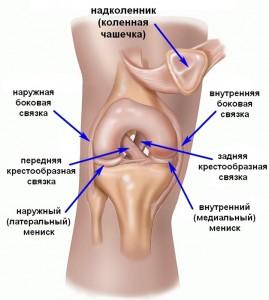 При надрыве связок коленного сустава хруст суставов лечение нетрадиционной медициной