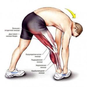 Болит мышца над коленом причины thumbnail