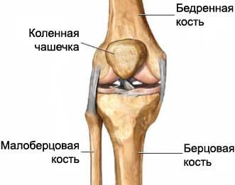 Что делать если выбил сустав на колене мази при артрозе коленного сустава